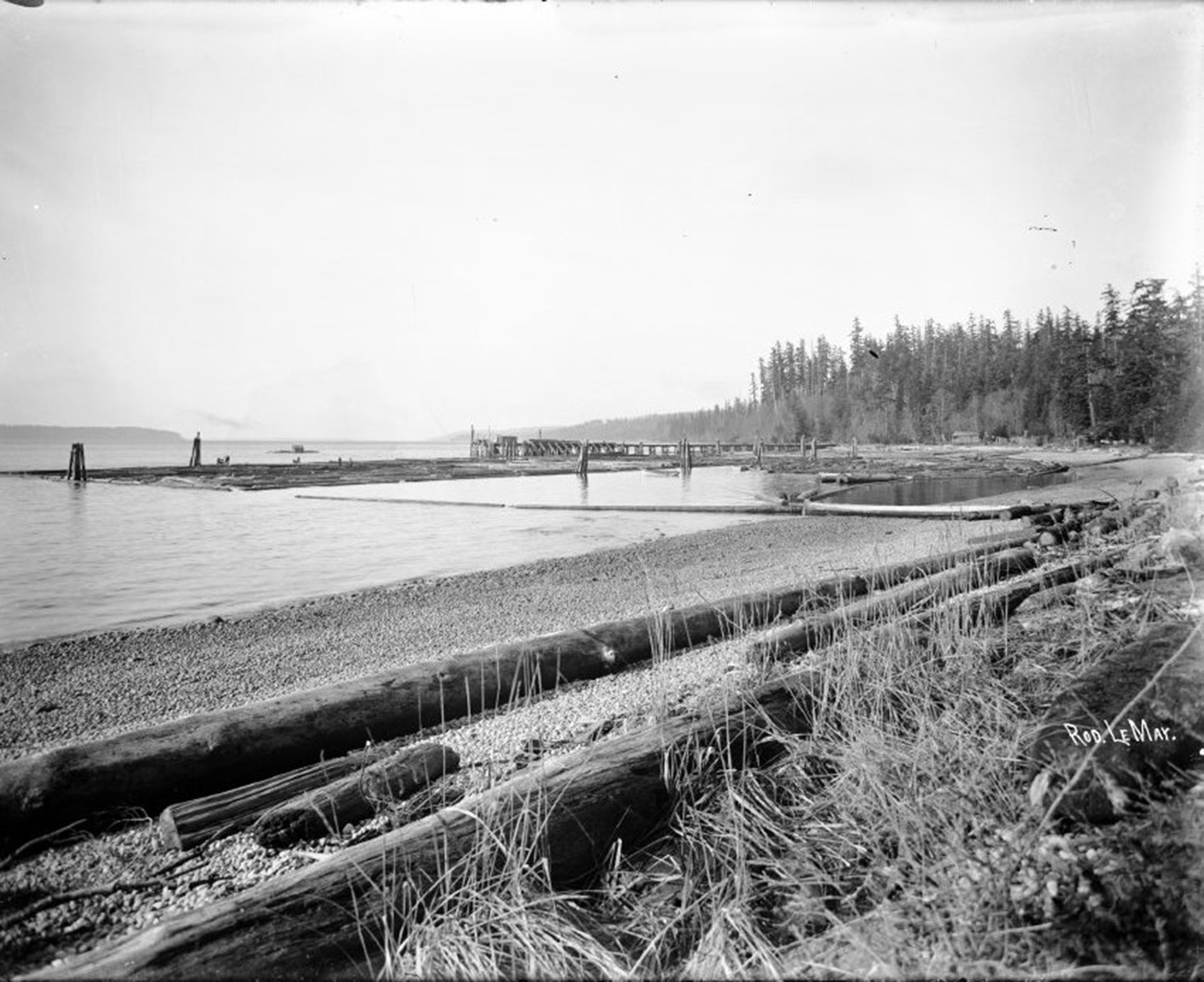 Michigan Landing (now Willingdon Beach) looking north to log dump. 1917.