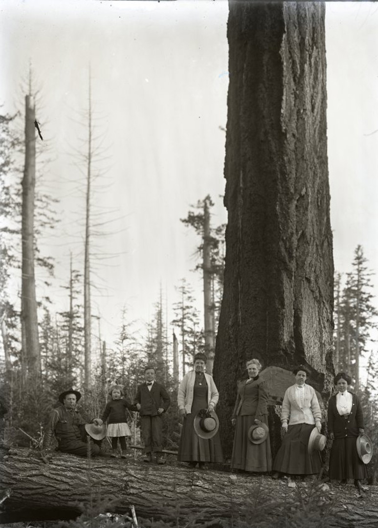 Powell River Townsite family portrait with Douglas fir in background, 1912.