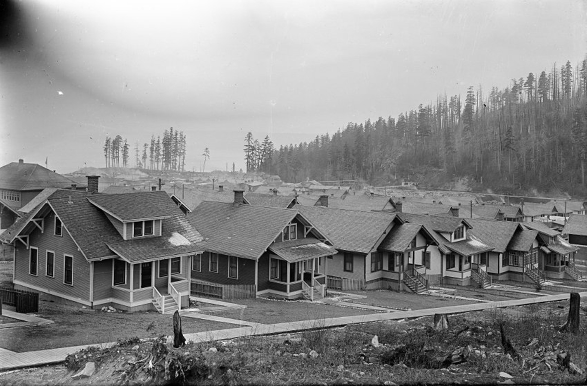 Powell River Townsite Cedar Street 200 block showing Craftsman style homes built by the Powell River Company.